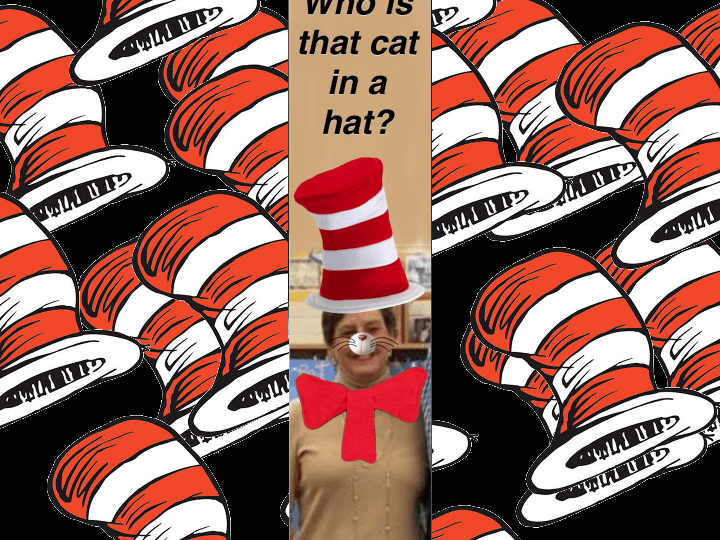 Librarian Cat in the Hat